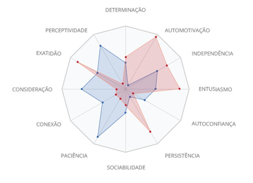 Dodecaedro de competências comportamentais